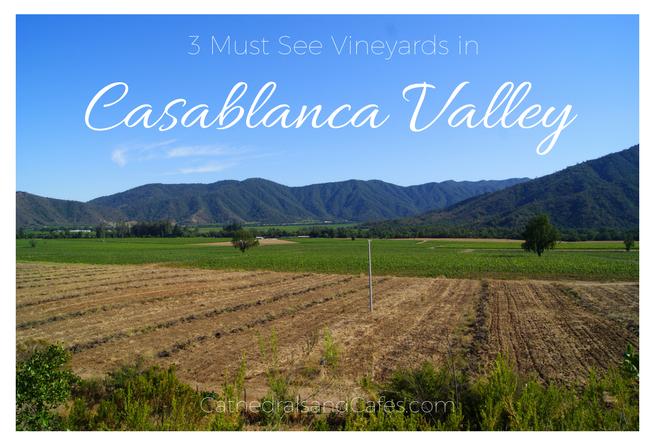 3-must-see-vineyards-in