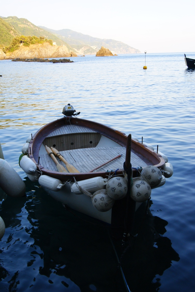 Cinque Terre boat docked