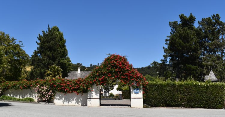 Entrance Gate covered in flowers to Folktale Winery and Vineyards