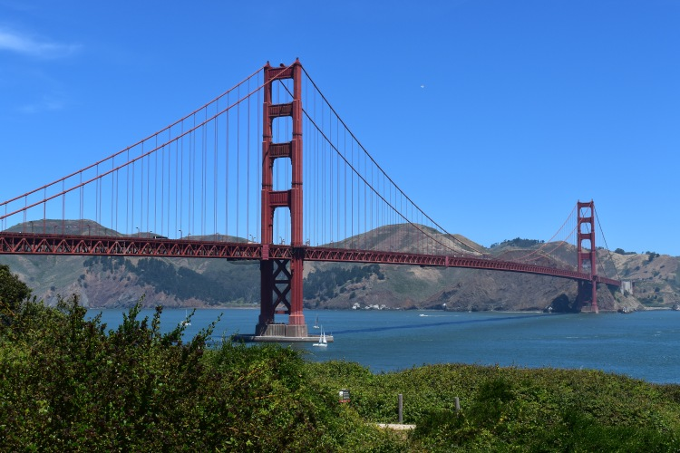 a view of the golden gate bridge from a nearby botanical marsh hiking spot