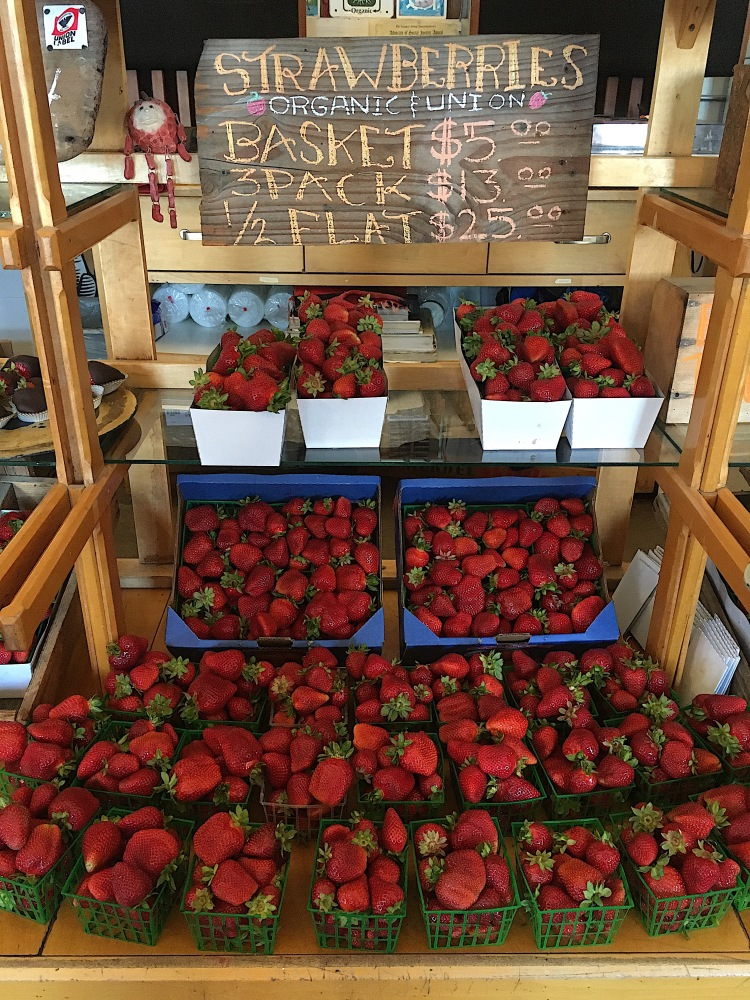 fresh strawberries from swantonberry farm