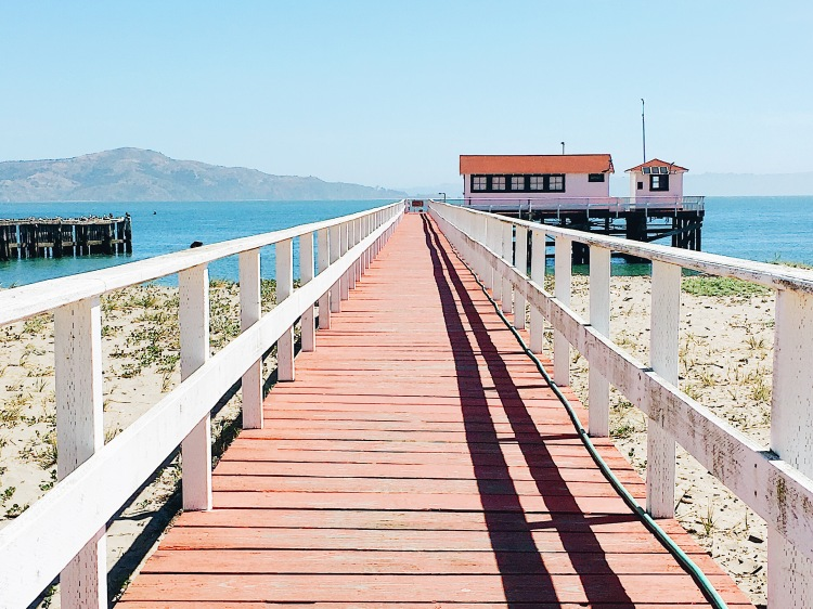 a view of a long pier at crissy field in san francisco california