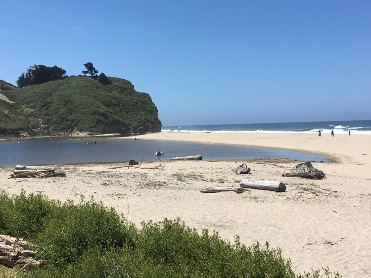 View of the ocean, sand, and beach at Pomponio State Beach in California