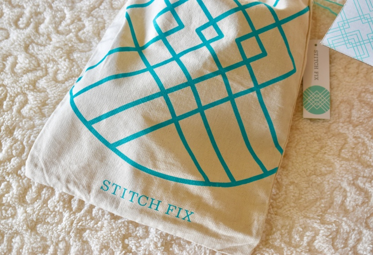 Stitch Fix Shoe Bag